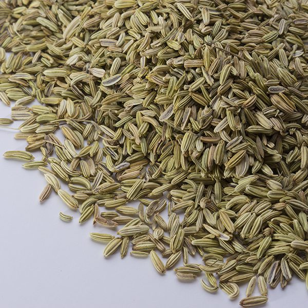 Fennel-Seeds-600×600